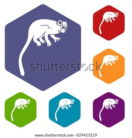 Marmoset monkey icons set hexagon isolated vector illustration