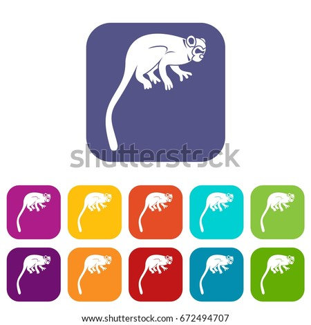 Marmoset monkey icons set vector illustration in flat style In colors red, blue, green and other