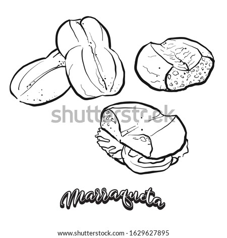 Marraqueta food sketch separated on white. Vector drawing of Leavened, lobed loaf, usually known in Chile. Food illustration series. Foto stock ©