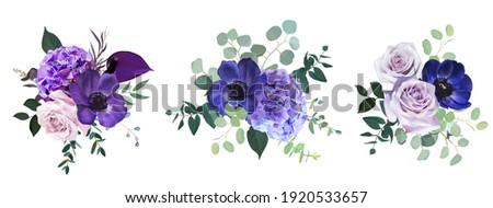 marvelous violet  purple and