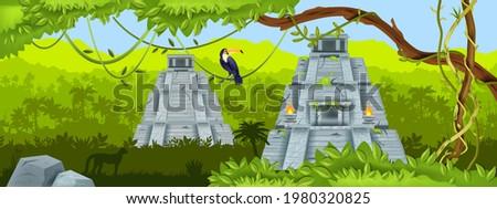 maya ancient pyramid  jungle