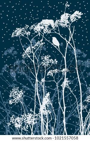 meadow flowers in a winter day