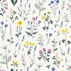 Meadow wildflower seamless vector pattern. Boho botanical floral background. Delicate field flower and herb illustration.