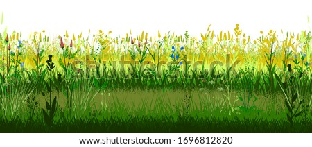 Meadow with flowers. Sunny mood. Blooming forbs. Grass landscape. Isolated vector on white background. Horizontal view. Spring Summer Meadowland. Sun Grassland. Plants, Herbs. Bright beautiful scenery