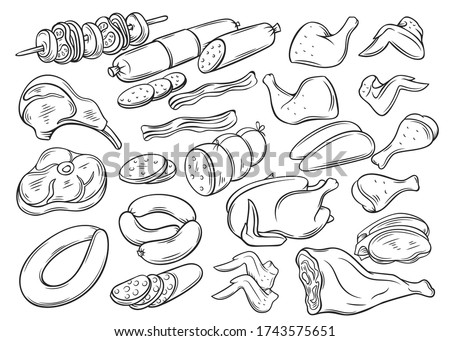 Meat and chicken products. Outline sausage, sausages, bacon, whole chicken, legs, wings, ham, barbecue and entrecote Hand drawn gastronomic meat products set.
