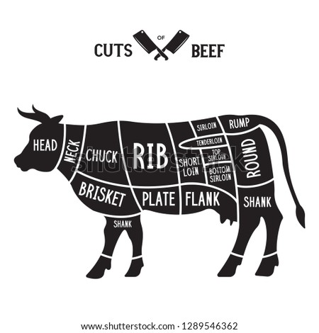 Meat cuts - beef. Diagrams for butcher shop. Scheme of beef. Animal silhouette beef. Guide for cutting. Vintage vector illustration.