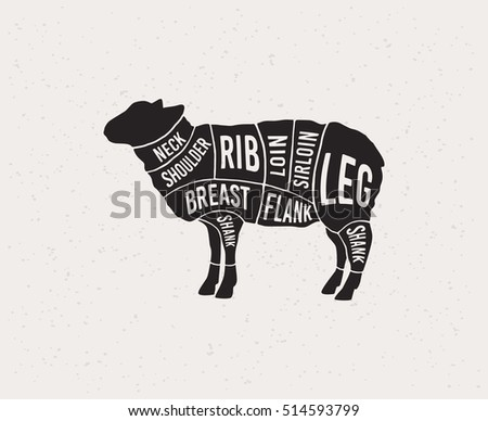 meat cuts diagrams for butcher