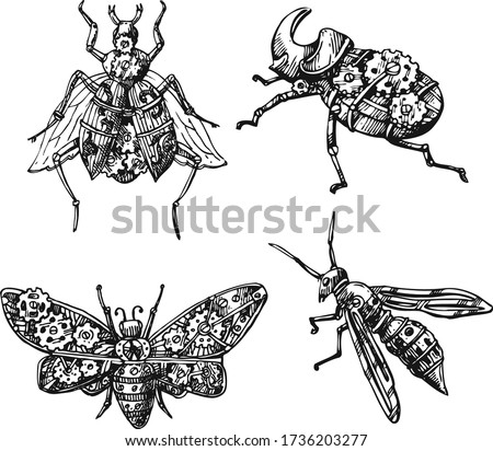 mechanical insect hand drawn