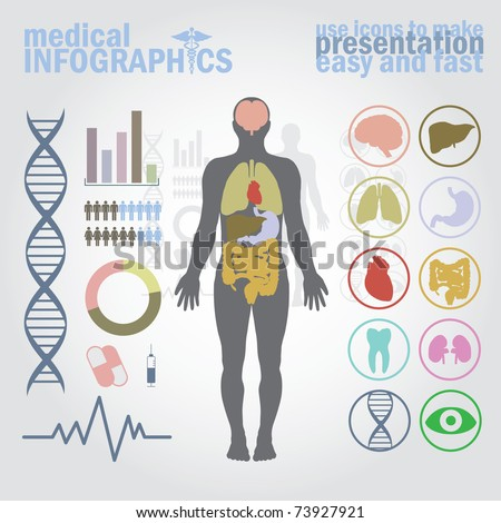 Free Vector on Diagram  Graph   Cardio Gram  Stock Vector 73927921   Shutterstock