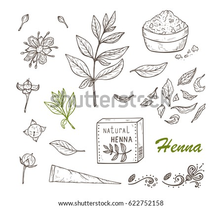 Henna Art Vector Pack Download Free Vector Art Stock Graphics
