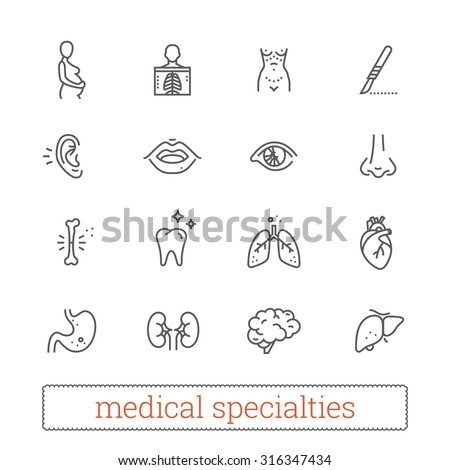 Medicine specialties thin line icons: diagnosis, medical, surgical. Human body systems, internal and sensory organs, surgical tools, diagnostic equipment. Design elements for web & mobile app.
