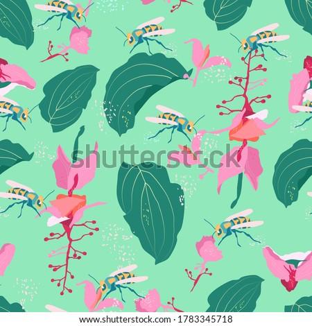 medinilla showy wildflowers