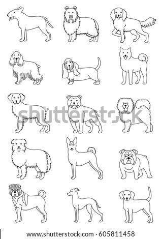 medium dog breeds line art set