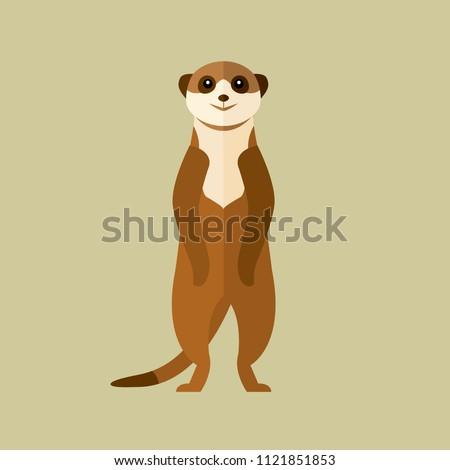 meerkat animal desert vector on