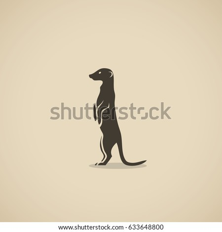 meerkat   vector illustration