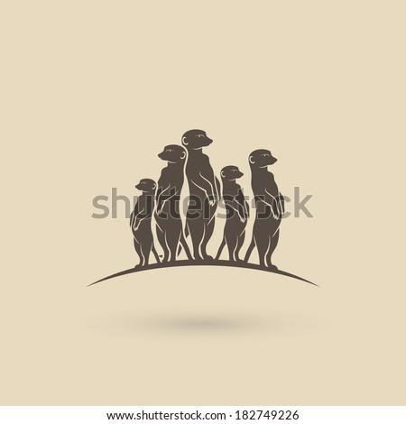 meerkats   vector illustration