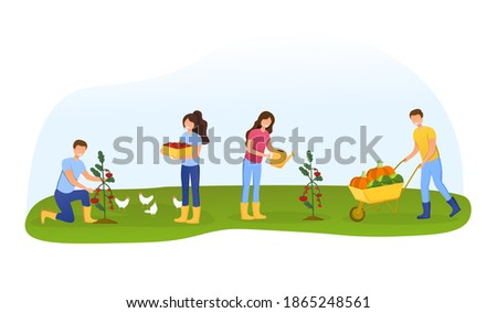 Men and women farmers or gardeners planting, caring and picking tomato harvest. Happy gorup of people harvesting ripe vegetables in summer garden. Cartoon flat vector illustration Photo stock ©