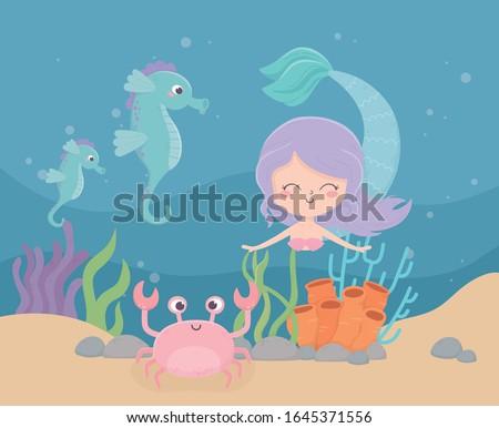 mermaid seahorses crab coral