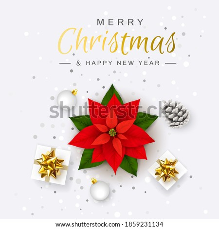 Merry Christmas and Happy New Year. Poinsettia Red Flower. Christmas Eve. Christmas Symbol. Holiday Flower Star. Gift boxes, Glitter confetti, Tinsel, Xmas ball, Pinecone. Top view flat lay. Vector
