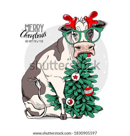 Merry Christmas and New year card. Sitting cow in the horn deer mask, glasses and with the fir tree. Humor t-shirt composition, meme, hand drawn style print. Vector illustration.