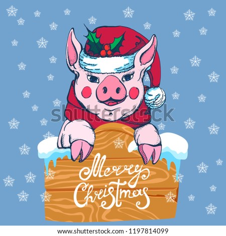 merry Christmas, pig in Santa's hat and scarf with wooden sign, snowflakes, vector #1197814099