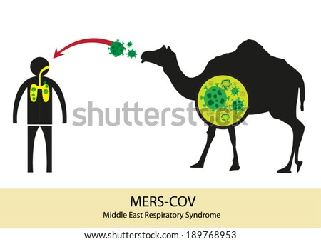 Mers Corona Virus transfer from camel to human. MERS-COV originated from Middle East and has no medicinal cure or no known vaccine. Editable Vector Illustration.