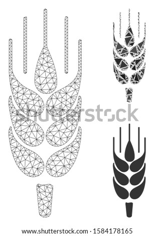 Mesh barley ear model with triangle mosaic icon. Wire frame triangular mesh of barley ear. Vector mosaic of triangle parts in different sizes, and color tinges. Abstract flat mesh barley ear,