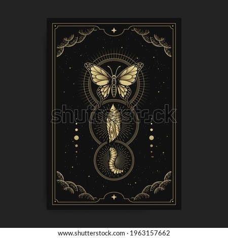 Metamorphosis of butterfly, cocoon, caterpillar with engraving, hand drawn, luxury, celestial, esoteric, boho style, fit for spiritualist, religious, paranormal, tarot reader, astrologer or tattoo Stock photo ©