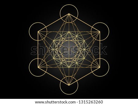 Metatrons Cube,  Flower of Life. Golden Sacred geometry, graphic element Vector isolated Illustration or black background. Mystic gold icon platonic solids, abstract geometric drawing,  crop circles