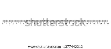 Metric Rulers. Size indicator units. Ruler 30 cm. Measuring tool.