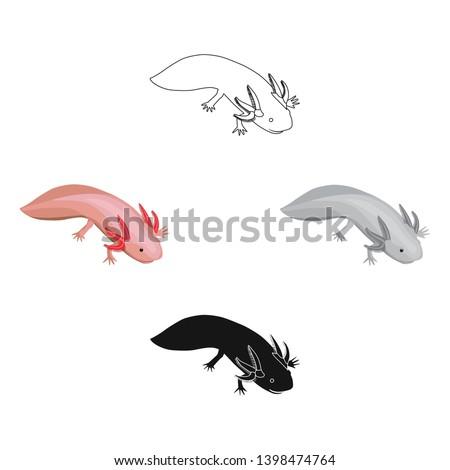 mexican axolotl icon in cartoon