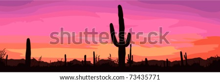 mexican desert sunset with