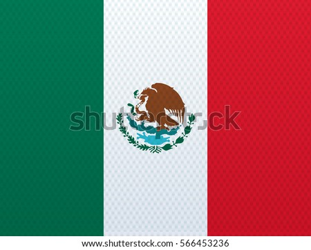 mexican flag with the texture