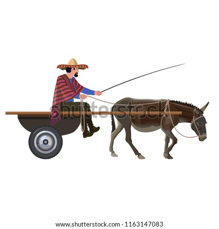 Mexican man in donkey cart. Vector illustration isolated on white background