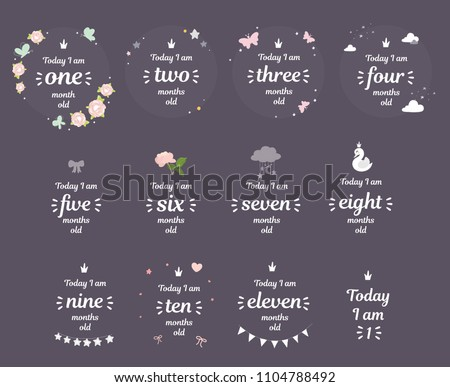Milestone baby month shower new born card baby shower baby newborn month one two three four five six seven eight nine ten eleven month by month year girl room