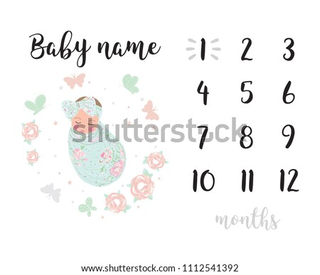 Milestone blanket background girl decoration card baby shower baby newborn month one two three four five six seven eight nine ten eleven month by month year girl room