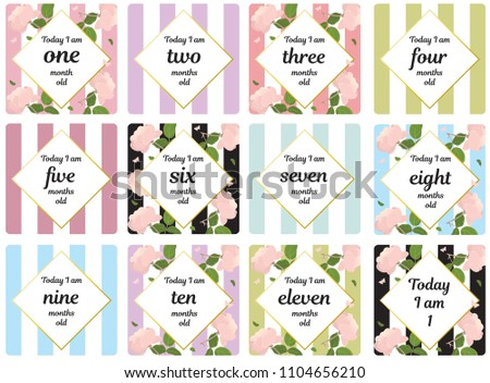 Milestone card baby shower baby newborn month one two three four five six seven eight nine ten eleven month by month year girl room