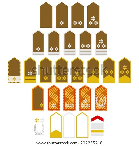 military ranks and insignia of