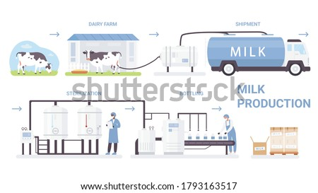 Milk bottle production process vector illustration. Cartoon flat infographic poster with processing line in automated dairy factory, making pasteurization and bottling milk product isolated on white