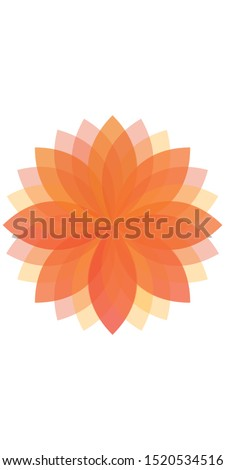 minimal flat transparent flower