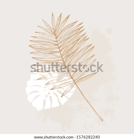 Minimal tropical art concept. Monstera and palm leaves flat lay with rough grunge brushstroke. Tropical leaves vector design. Hand drawn line art botany illustration in pastel colors