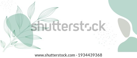 Minimalist abstract background with outline leaves