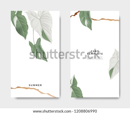 Minimalist botanical card template design, Syngonium podophyllum albo-variegatum plant with golden line on white, pastel vintage theme #1208806990