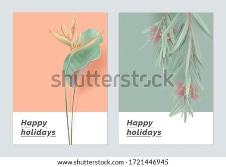 Minimalist botanical greeting card template design, heliconia rostrata and bottle brush tree