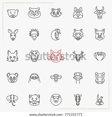 Minimalistic Slim Line Animals & Insects Vector Icons