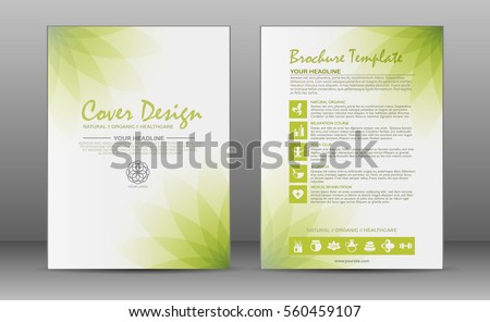 Minimalistic Spa And Healthcare Design Brochure Flyer Template With Elements Of Medicine