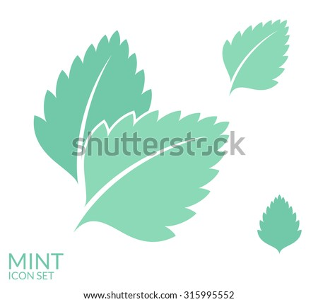 Shutterstock Mint. Icon set. Isolated leaves on white background. Vector illustration