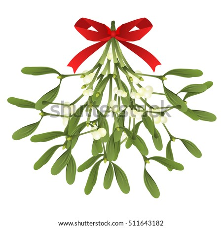 mistletoe hand drawn vector