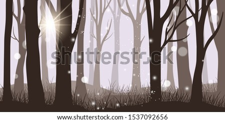 misty forest background horror