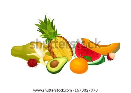 Mixed Exotic Fruits Arrangement or Composition Vector Illustration